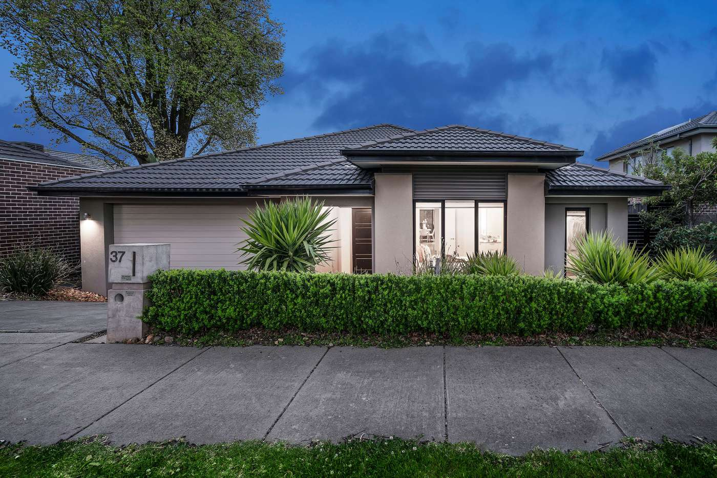 Main view of Homely house listing, 37 Camville Road, Mulgrave VIC 3170