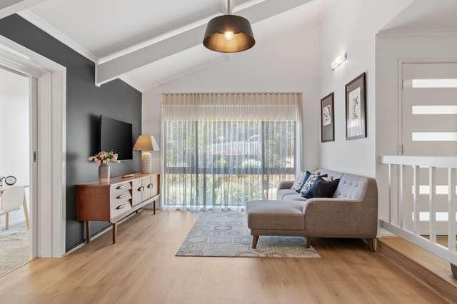 22 Griffith Street, Tamborine Mountain QLD 4272