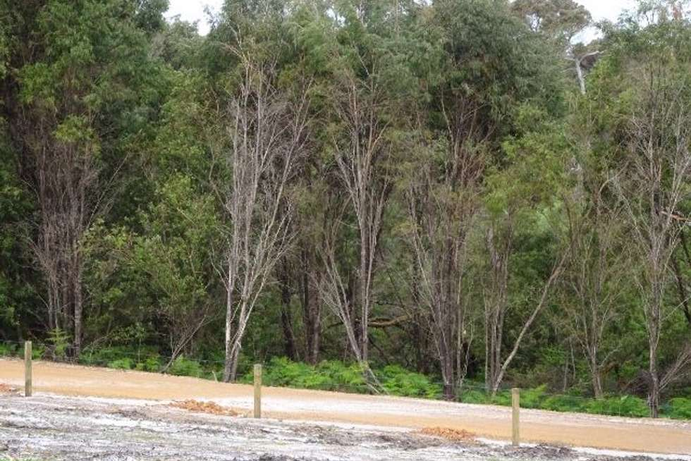 Fourth view of Homely residentialLand listing, Lot 183 Beaufortia Gardens, Denmark WA 6333