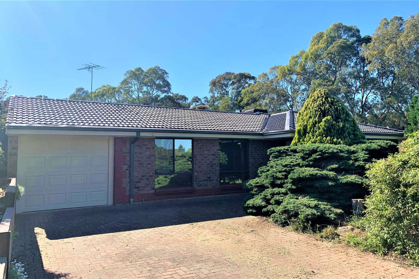 Main view of Homely house listing, 13 Anita Court, Aberfoyle Park SA 5159
