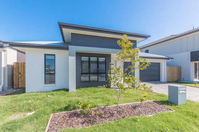 33 Buccaneer Street, Newport QLD 4020