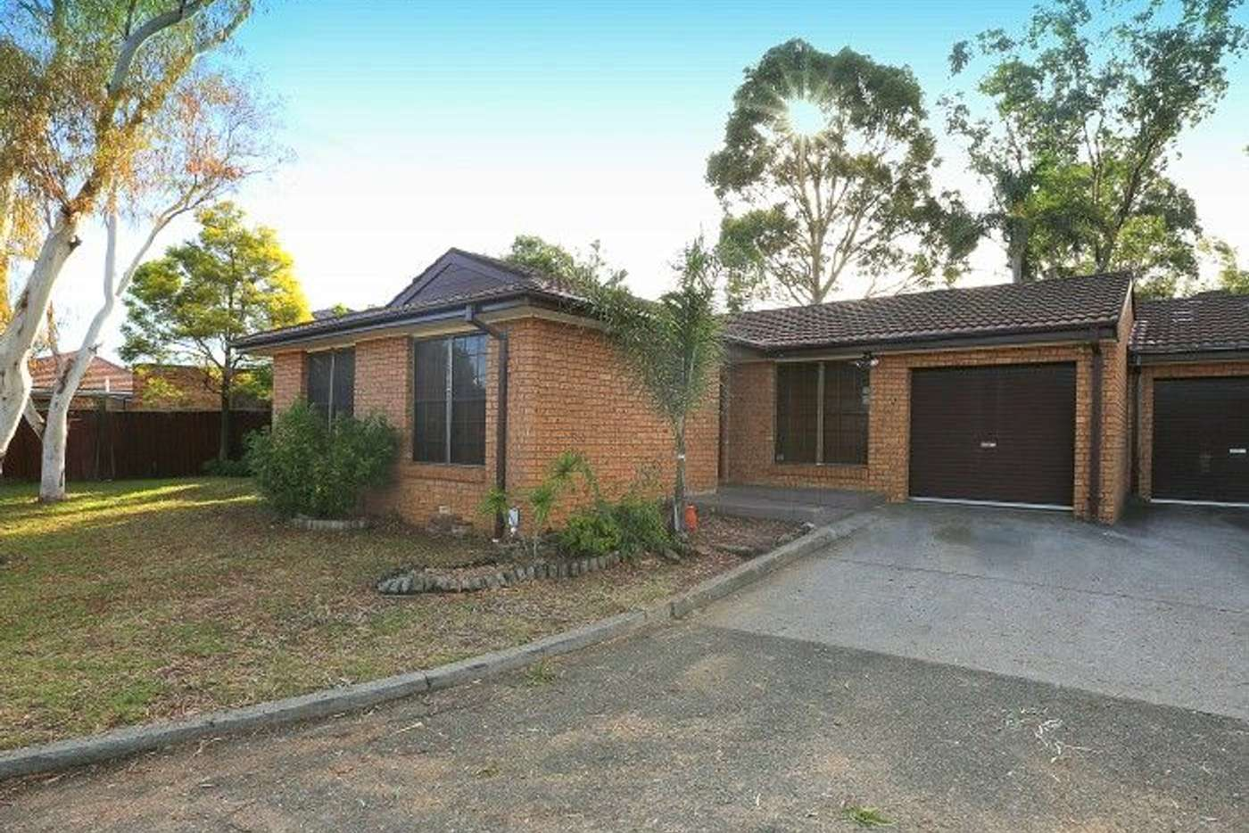 Main view of Homely villa listing, 5/41 Gleeson Avenue, Condell Park NSW 2200