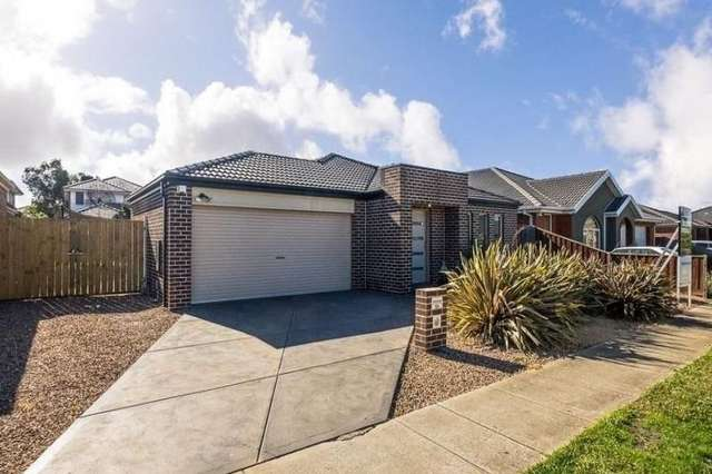 30 Holly Drive, Point Cook VIC 3030
