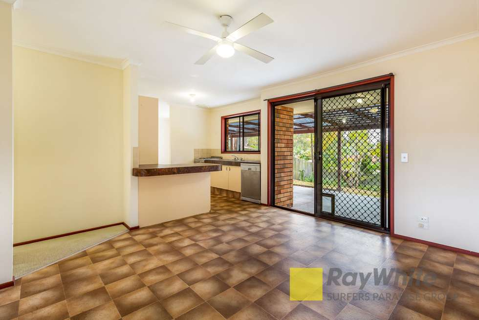 Third view of Homely house listing, 19 Tamworth Drive, Helensvale QLD 4212