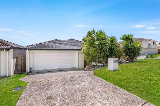 1 Cairnlea Drive, Pimpama QLD 4209