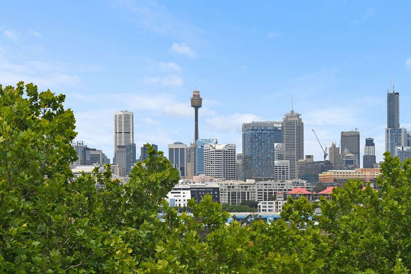 Main view of Homely unit listing, 12/19 Sheehy Street, Glebe NSW 2037
