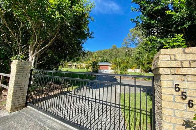 556 Tallebudgera Creek Road, Tallebudgera Valley QLD 4228