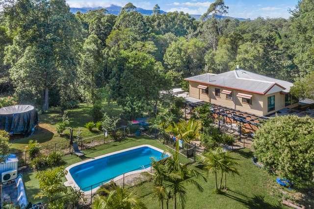 1105 Limpinwood Road, Tyalgum NSW 2484