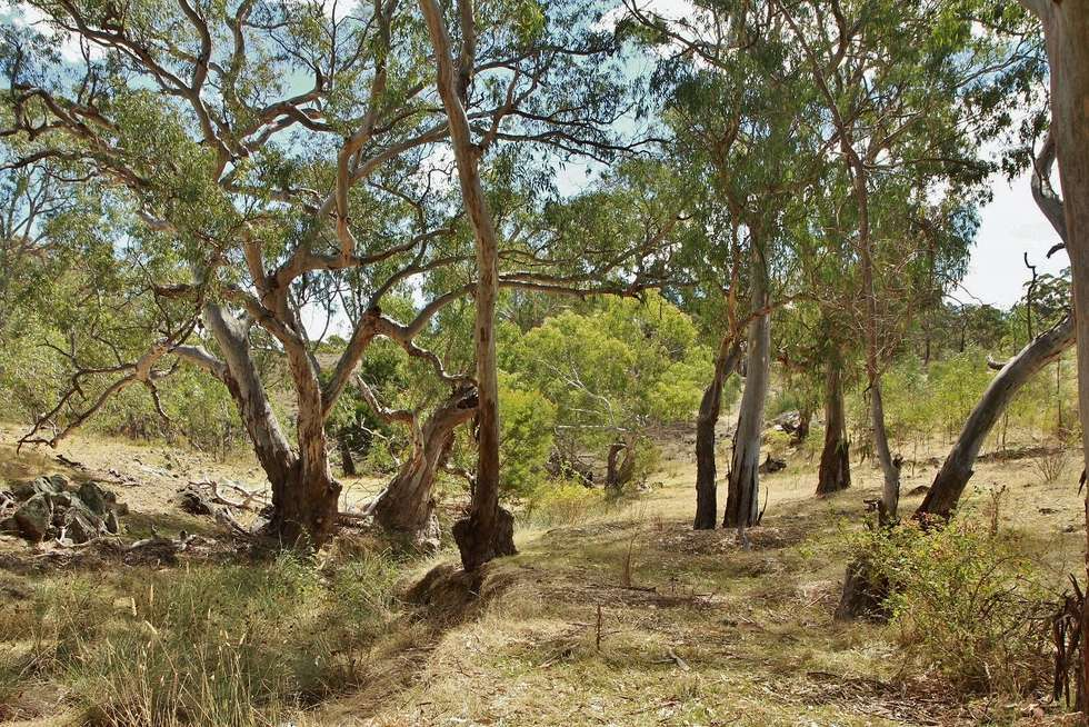 Fifth view of Homely residentialLand listing, 476 Spring Flat Road, Heathcote VIC 3523