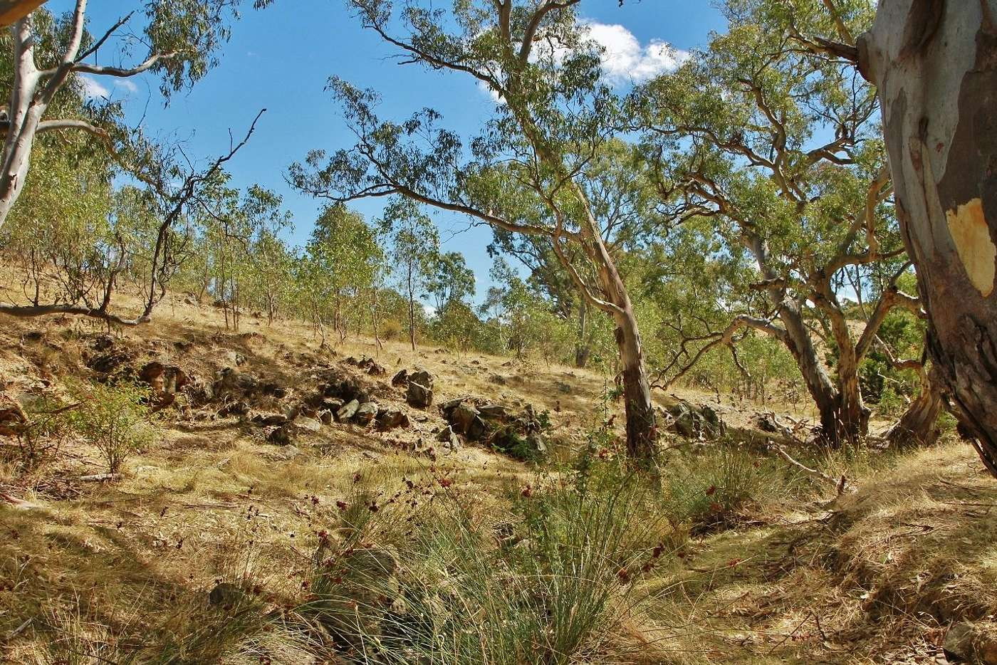 Seventh view of Homely residentialLand listing, 476 Spring Flat Road, Heathcote VIC 3523