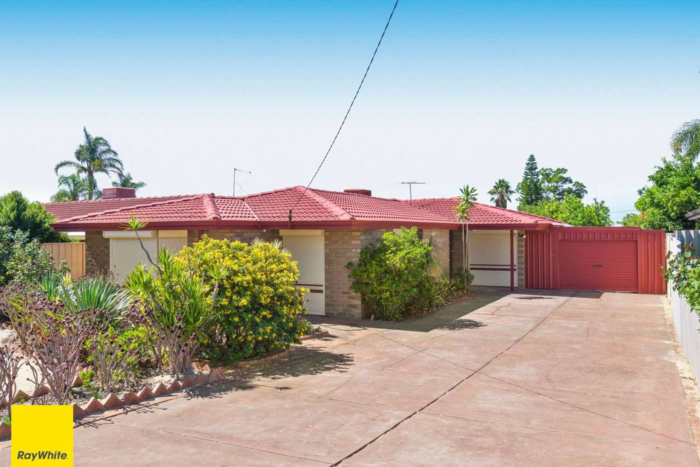 Main view of Homely house listing, 9 Regnans Close, Mirrabooka WA 6061