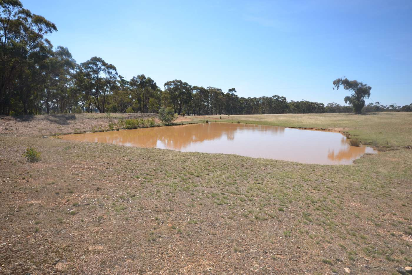 Sixth view of Homely lifestyle listing, 463 Avoca-Greenhill Creek Road, Amphitheatre VIC 3468