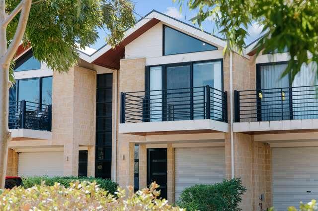7A Lucia Place, Mawson Lakes SA 5095