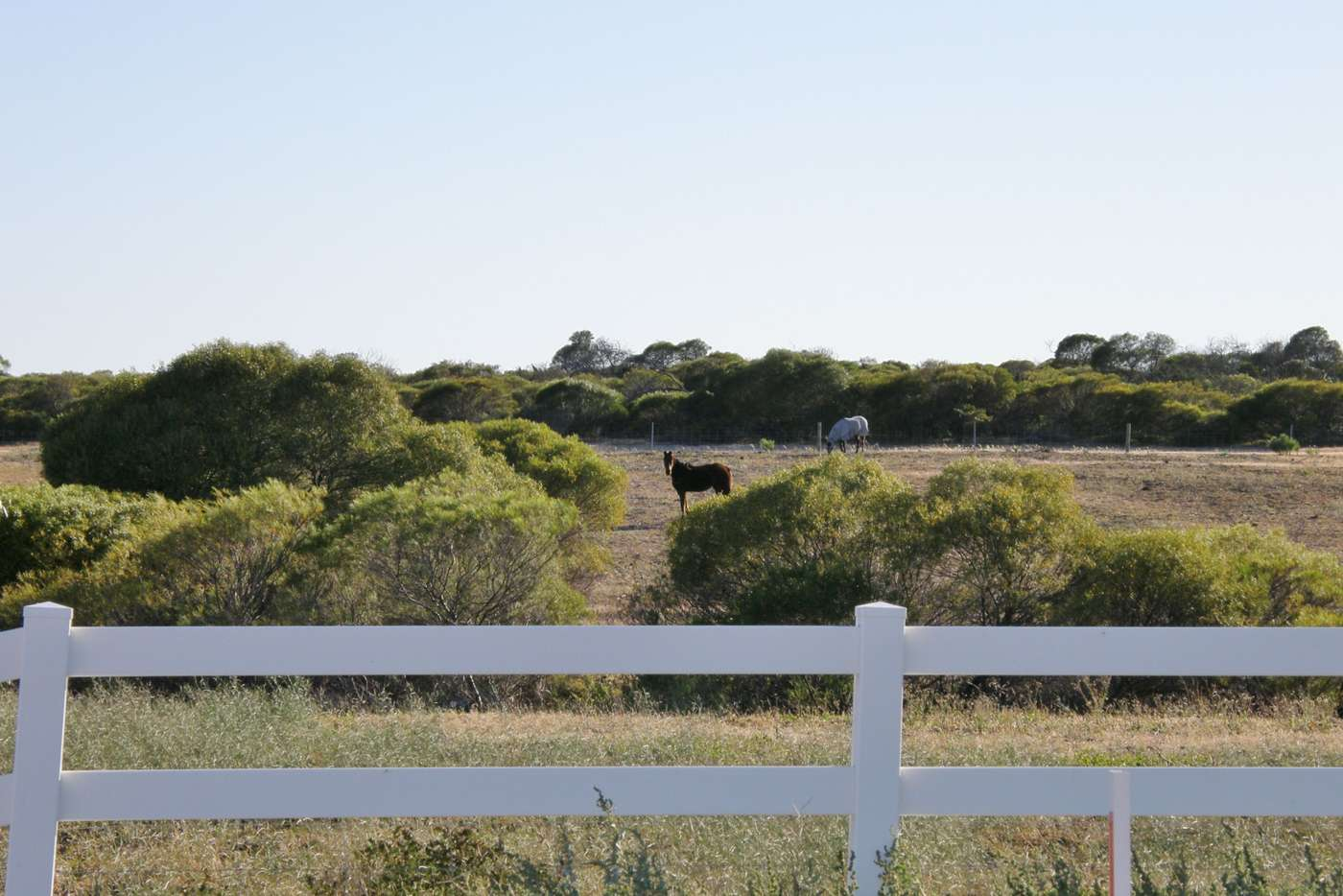 Seventh view of Homely residentialLand listing, 6 Lot 12 Ranch Court, Kalbarri WA 6536