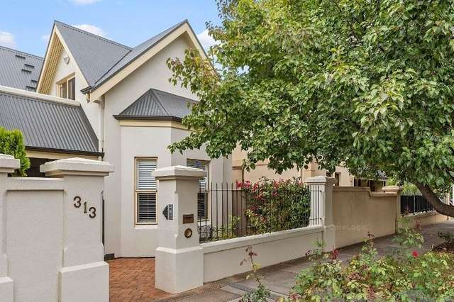 313 Ward Street, North Adelaide SA 5006