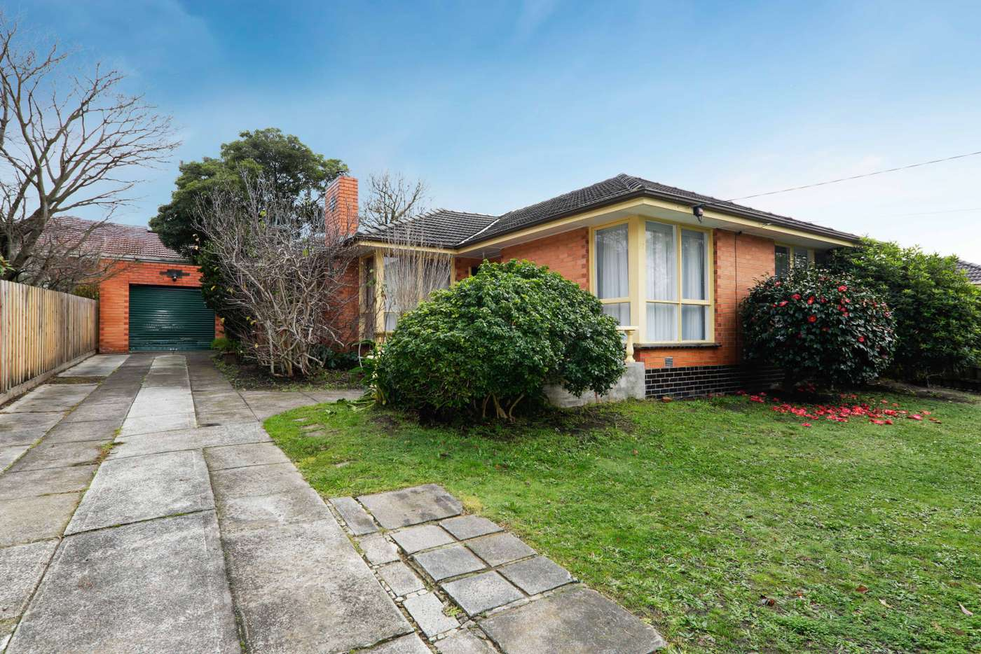 Main view of Homely house listing, 17 Terang Avenue, Burwood East VIC 3151