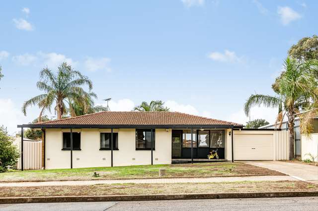 61 Mckenzie Road, Elizabeth Downs SA 5113