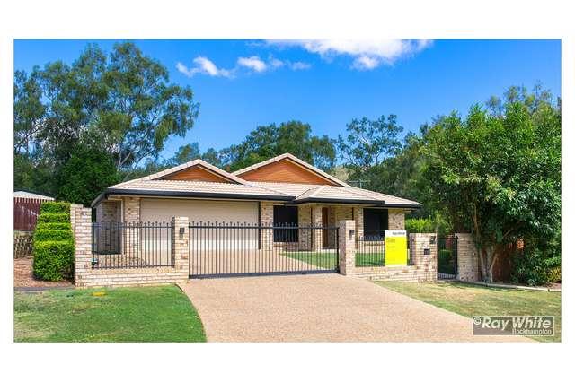 2 Treefern Terrace, Frenchville QLD 4701