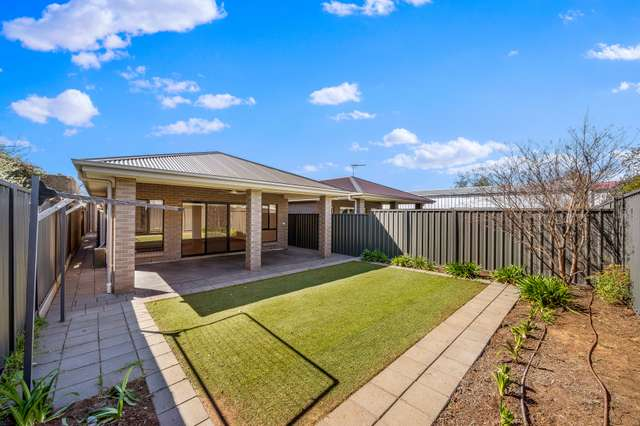 43A Corconda Street, Clearview SA 5085