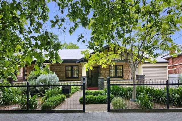 19 Flinders Avenue, Colonel Light Gardens SA 5041