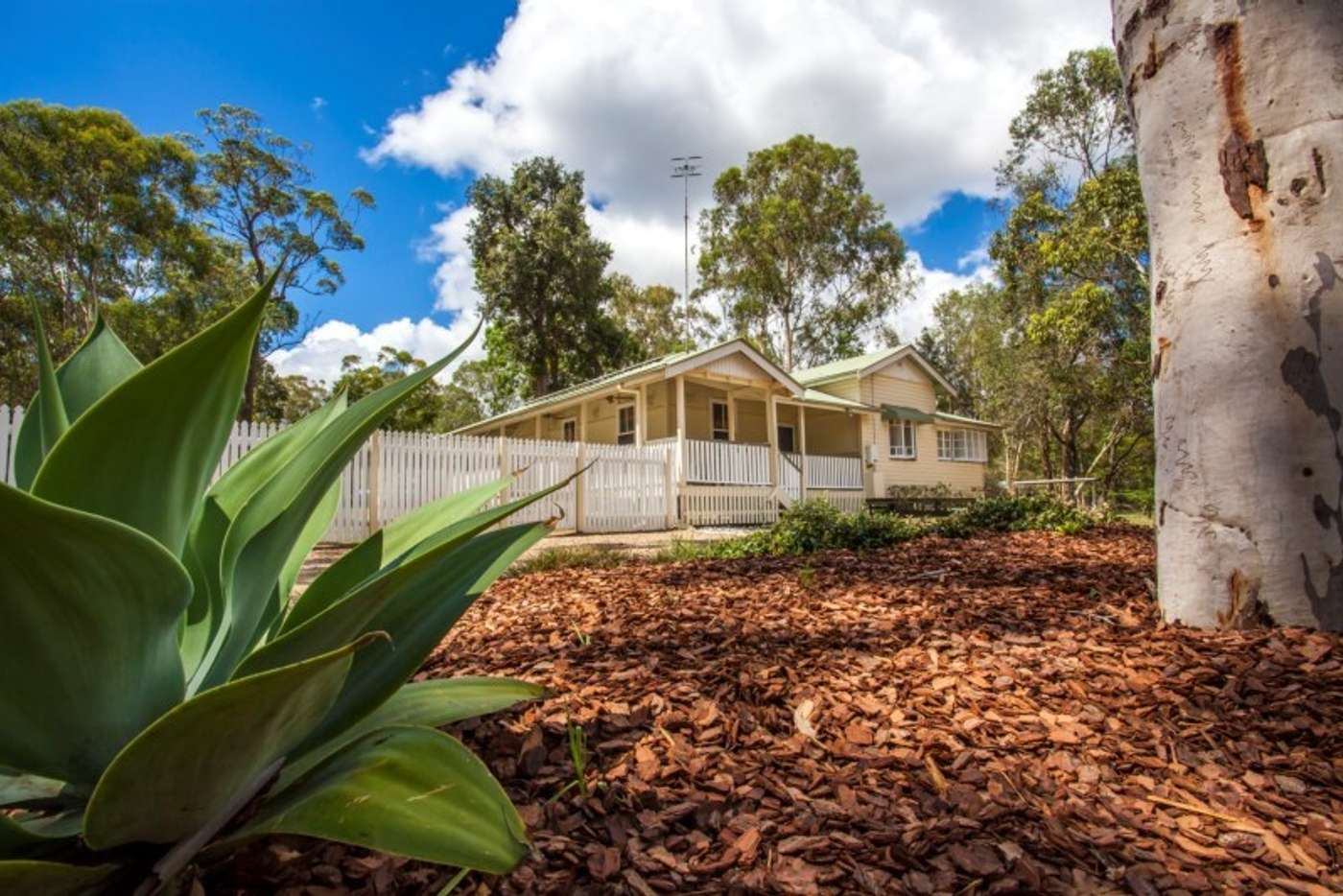 Main view of Homely house listing, 56 Carriage Way, Cooroibah QLD 4565