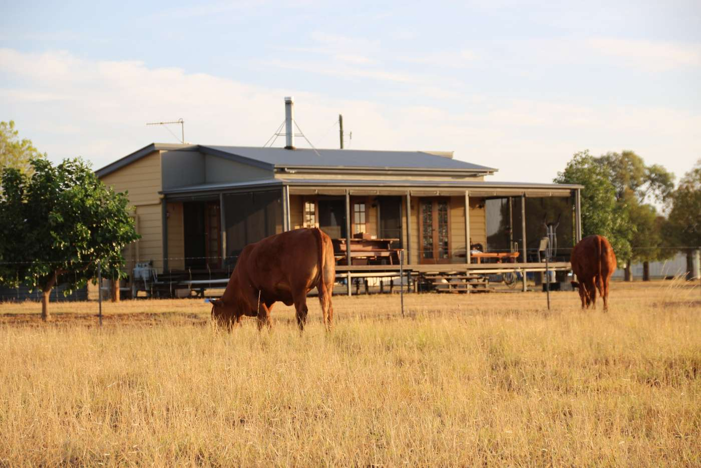 Main view of Homely ruralOther listing, 0 BURRADOO, Roma QLD 4455