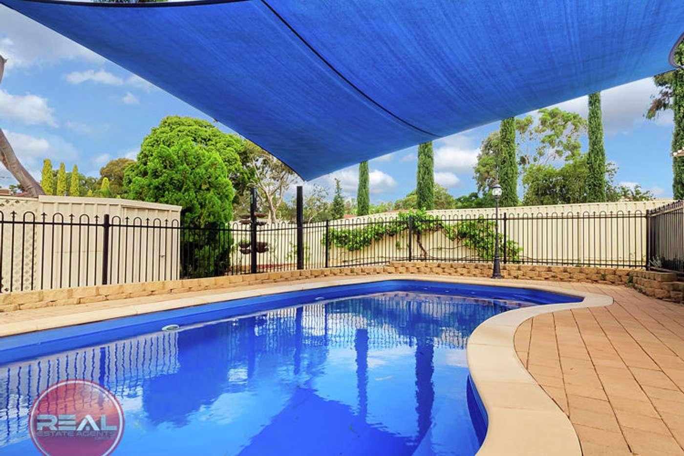 Main view of Homely house listing, 49 Damian Drive, Salisbury Heights SA 5109