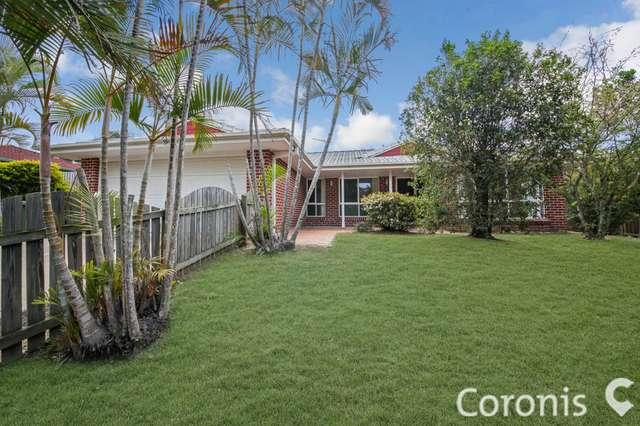 16 Arlington Drive, Arana Hills QLD 4054