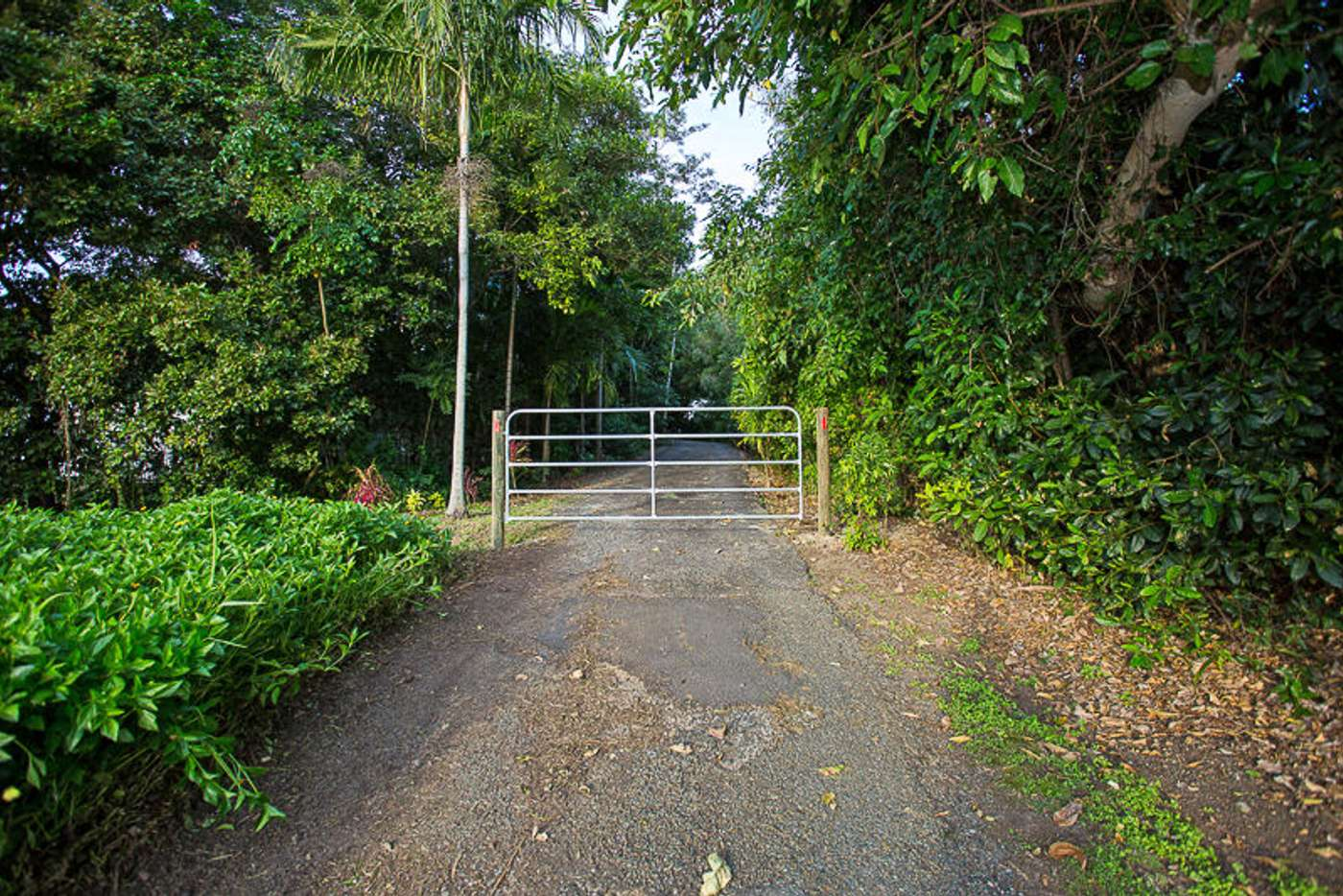 Main view of Homely residentialLand listing, 312 Shoal Point Road, Shoal Point QLD 4750