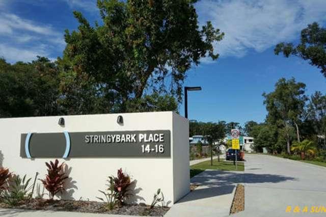 16 Toral Drive, Buderim QLD 4556