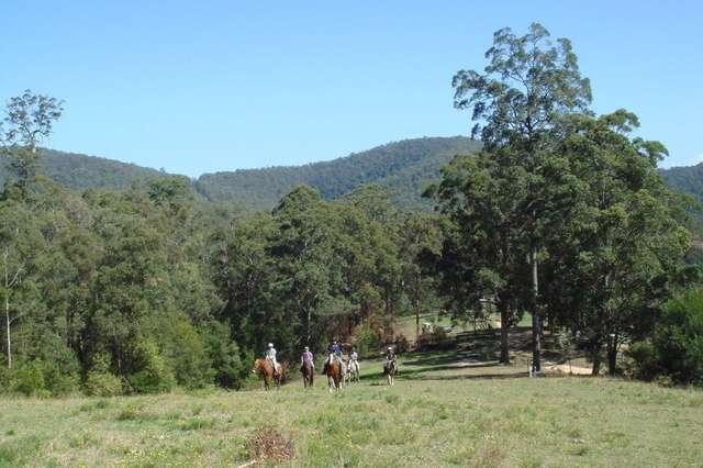 334 Crows Road, Beechwood NSW 2446