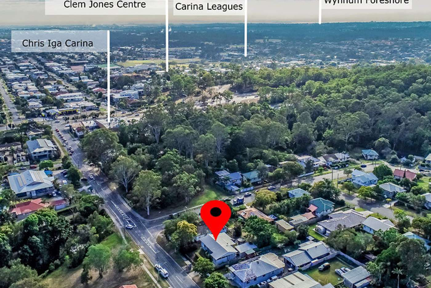 Main view of Homely house listing, 50 Gallipoli Road, Carina Heights QLD 4152