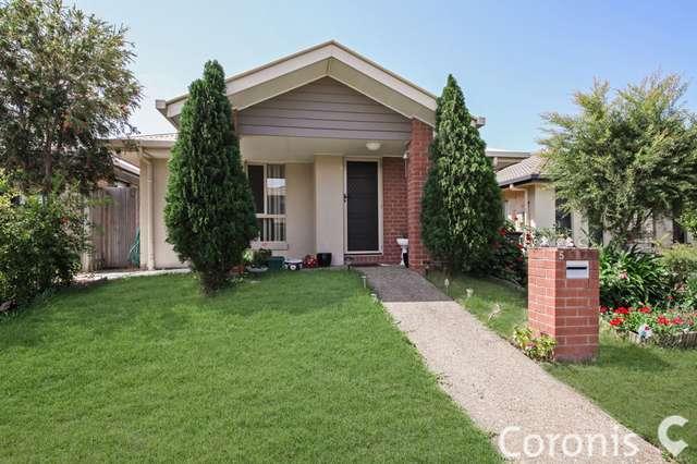 5 Katherine Street, Fitzgibbon QLD 4018
