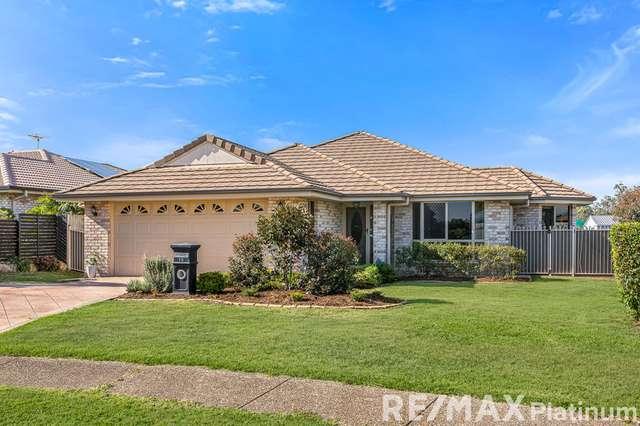 16 Woodrose Road, Morayfield QLD 4506