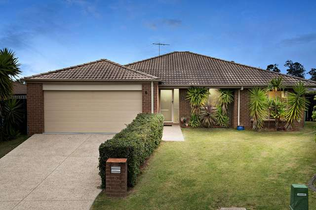 6 Tangelo Court, Bellmere QLD 4510