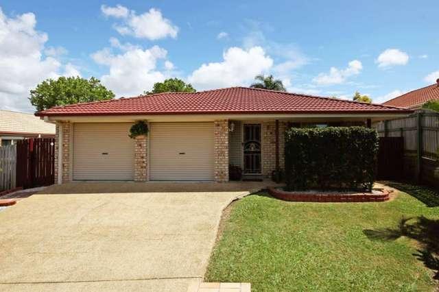 17 Gumnut Street, Taigum QLD 4018