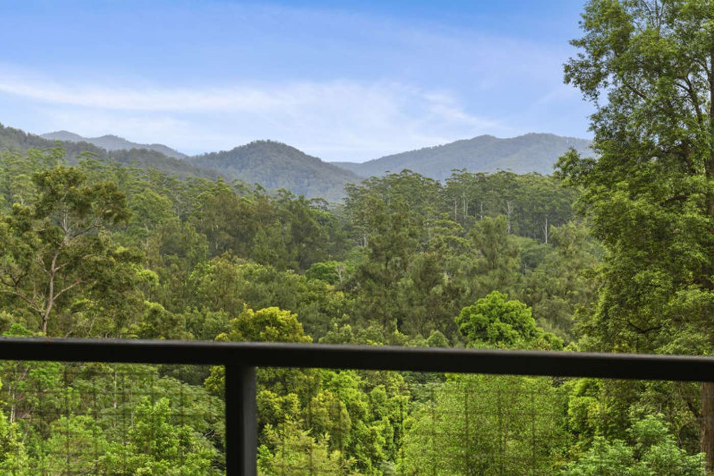 Main view of Homely acreageSemiRural listing, 1772 Kalang Road, Bellingen NSW 2454