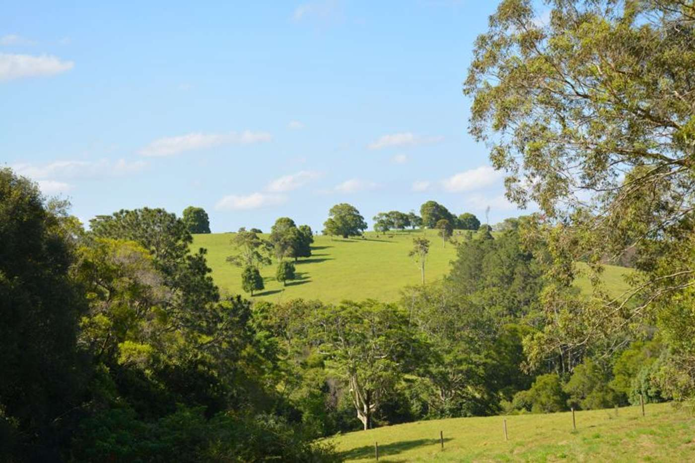 Main view of Homely house listing, 146 Macadamia Drive, Maleny QLD 4552