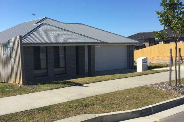 61 Jones Street, Coomera QLD 4209