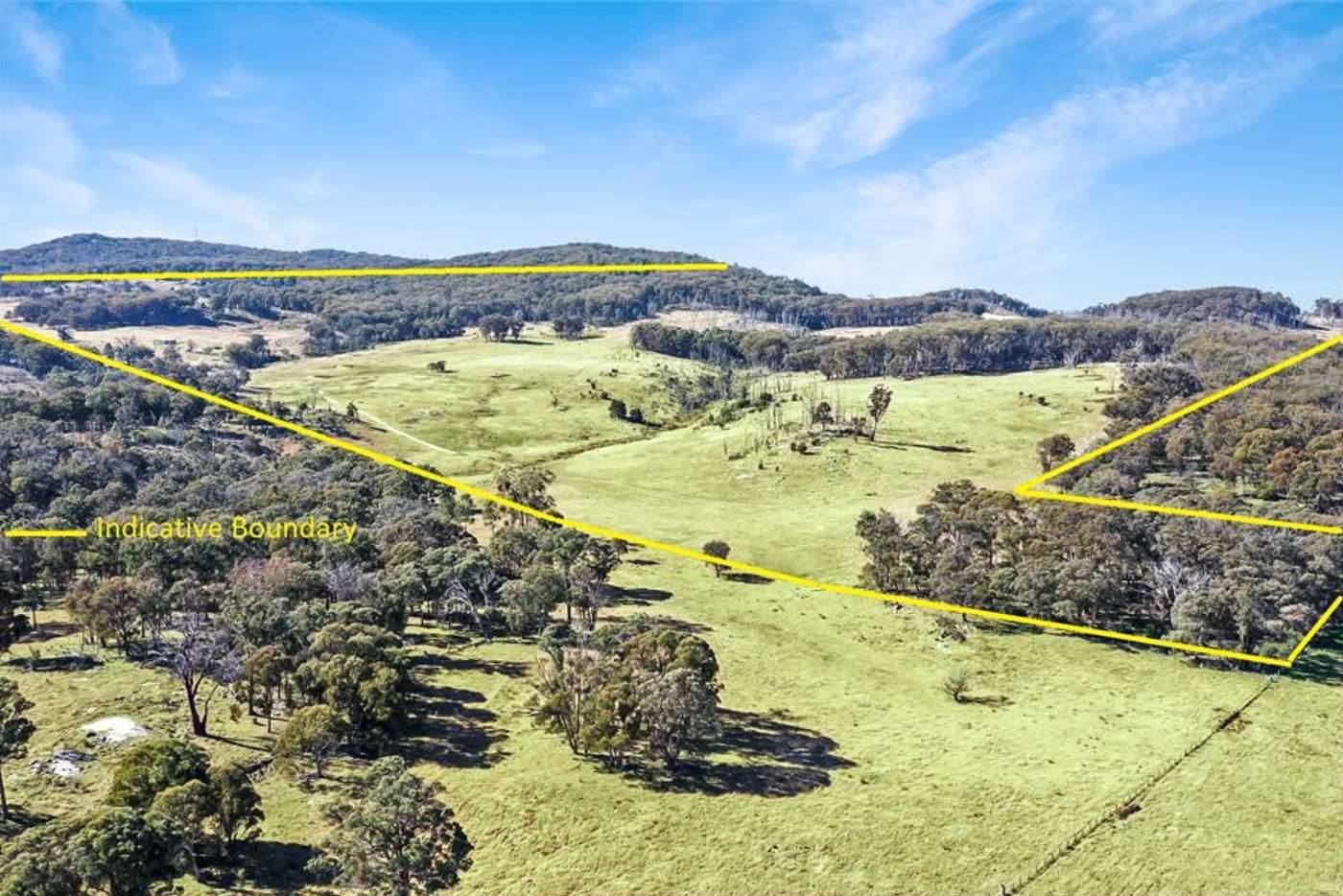Main view of Homely livestock listing, 221 Gum Flat Road, Tenterfield NSW 2372