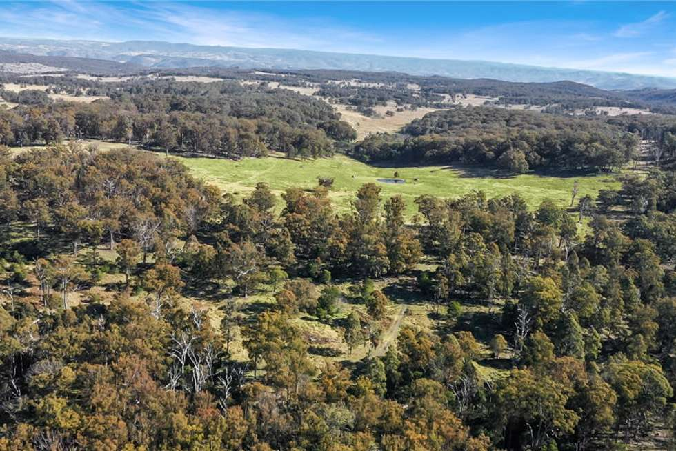 Fourth view of Homely livestock listing, 221 Gum Flat Road, Tenterfield NSW 2372