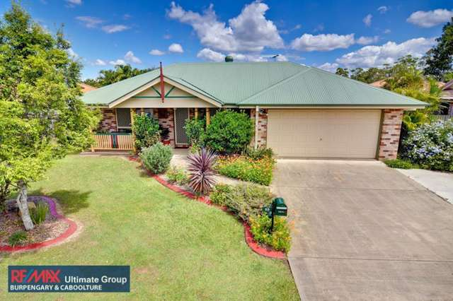 53 Olympic Court, Upper Caboolture QLD 4510