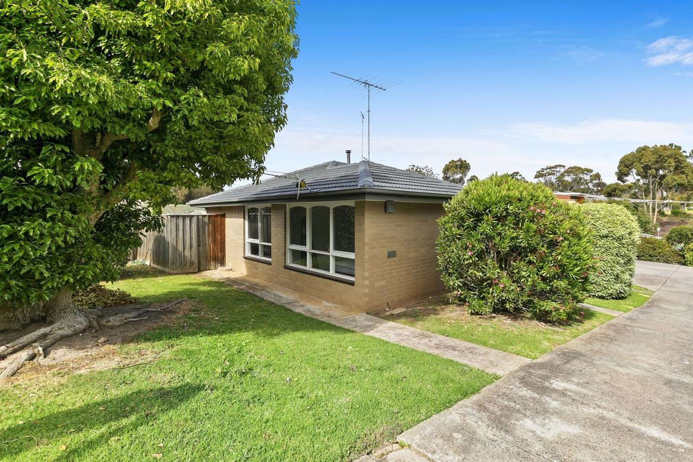 Main view of Homely unit listing, 2/56 IONA Avenue, Belmont VIC 3216