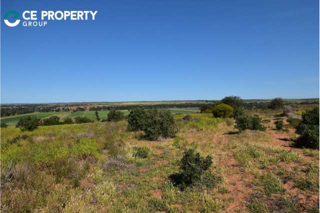 LOT 341 and 346 Rundle Road, Ponde SA 5238