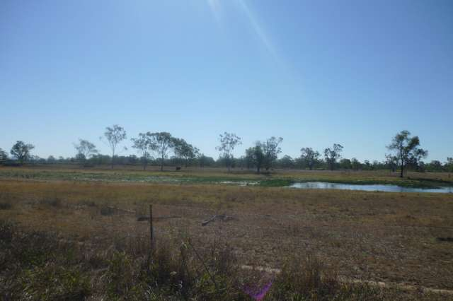 Lot  113 Edwards Road, Pink Lily QLD 4702