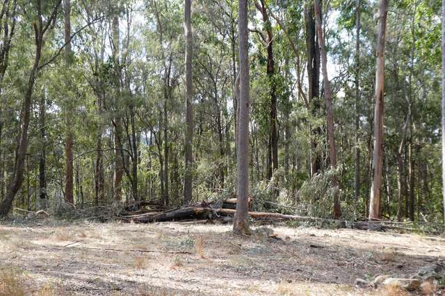 472 Long Gully Road, Drake NSW 2469