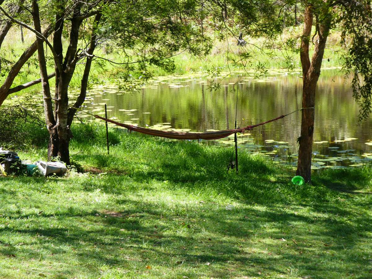 Main view of Homely  listing, 3009a Old Tenterfield Road, Busbys Flat, NSW 2469