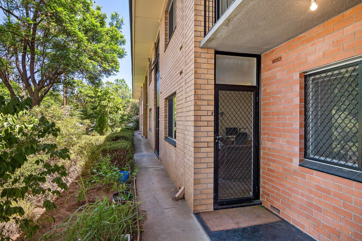 3/294 Goodwood Road