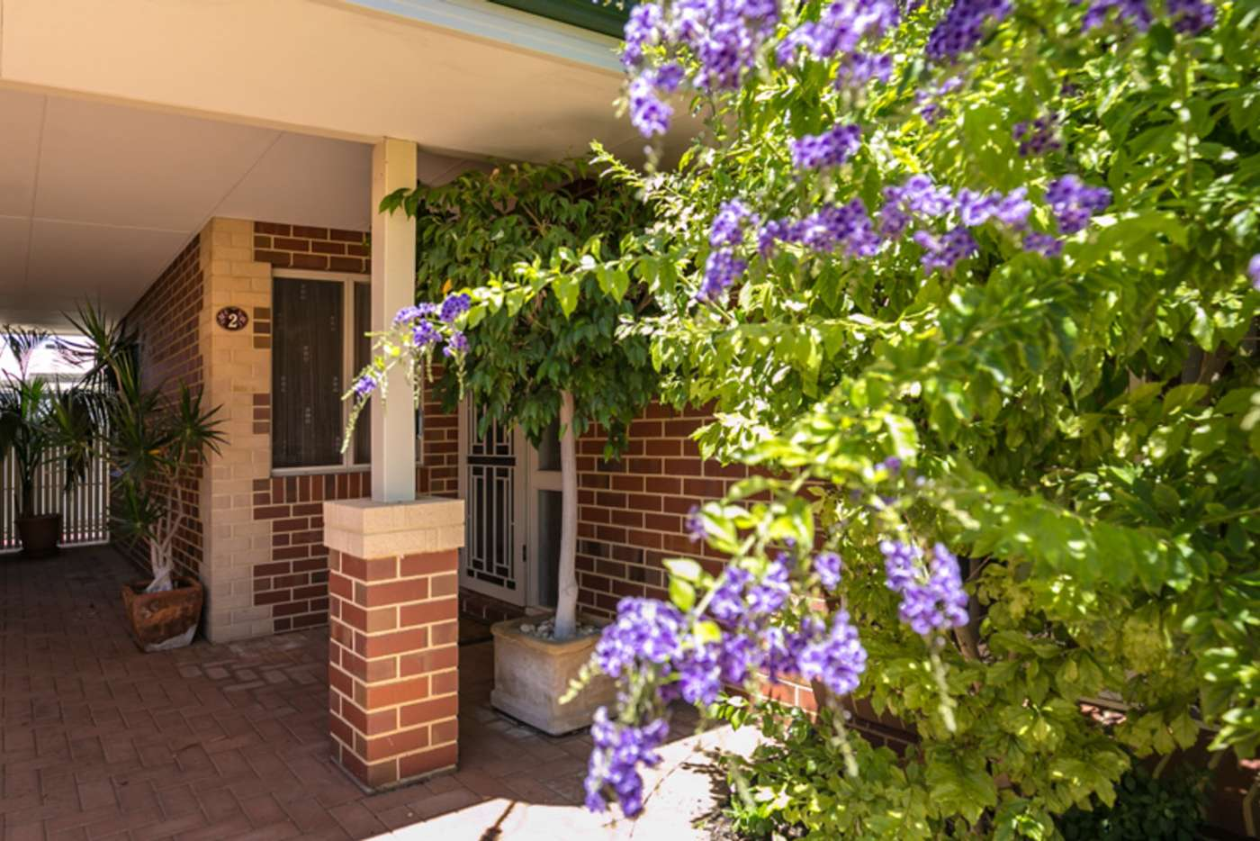 Main view of Homely house listing, 2/39 Browning Street, Yokine WA 6060