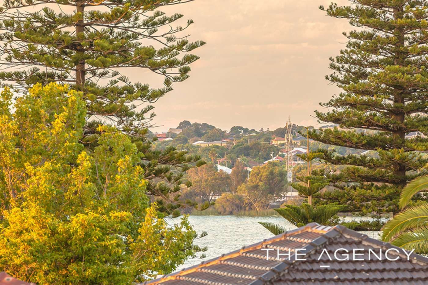 Fifth view of Homely house listing, 20 Kavanagh Street, West Leederville WA 6007